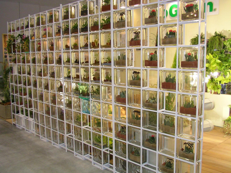Ogród z luksferów i kaktusów